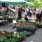 Anyák napi virágvásár és Anyám Tyúkja Főzőfesztivál