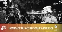 Ivan & the Parazol akusztik
